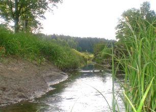 Den lilla ån, vars namn numera är fastställt till Rökärrsån. Foto: Johan Eriksson