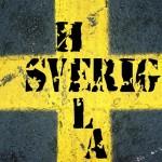 Hela Sverige flagga