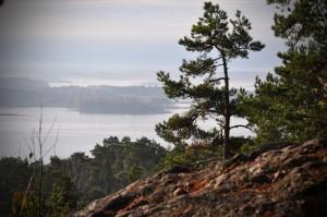 Braviken KolmardenFoto: TS Eriksson Wikimedia Commons