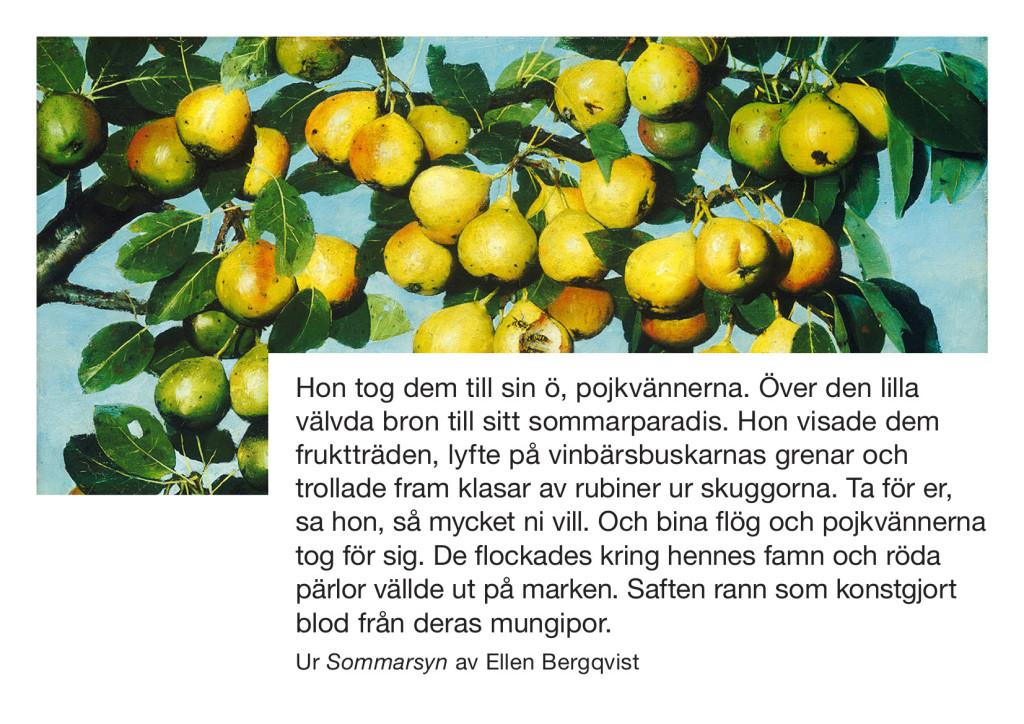 Sommarsyn Ellen Bergkvist